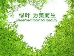 绿叶 为美而生