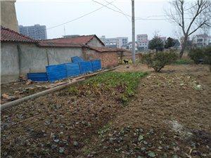 现举报隔壁李学法多占用家宅基地使用面积外建筑物养鸡