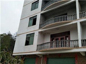 河东片区碧桂园周边思验学校附9室4厅商住楼出售