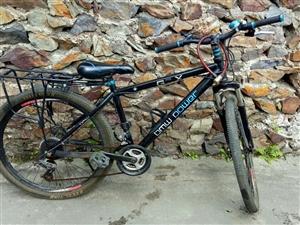 出闲置自行车一辆 280 看上带走 绝对值  日常使用是绰绰有余的。
