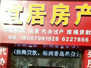 天湖凤凰城店面50平方2万一年