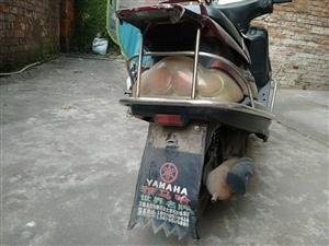 本人想换新电动车了,所以现在有一辆二手雅马哈摩托车和一辆自行车想出售,价格面议哈~189795738...
