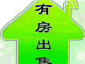 毛坯第一城2室44万元