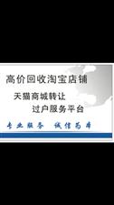 回购闲置淘宝网店,天猫商城转让过户 温州地区上门指导联系电话18814952987(微信同号)