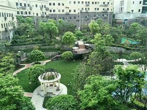尚西国际,9层小高层电梯,花园洋房,有证急售
