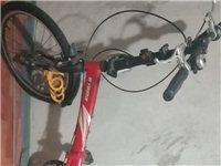 天际Pro~M900自行车
