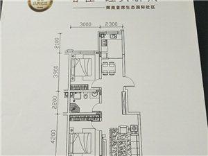 出售春佳地产一手房,毛坯房。电梯楼均有房源!