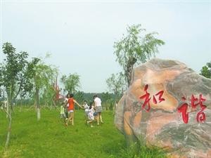 通许东湖公园风景秀丽