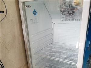 海尔立式冷藏柜300多升,没拆封
