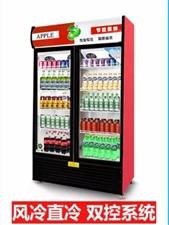 艾拓风冷直冷双控系统冰柜,2018年4月购买,地方有限不太适用现转让。同城自提非诚勿扰!