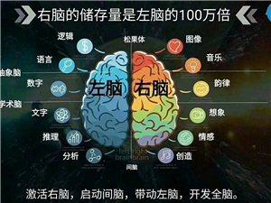 最强大脑体验中心