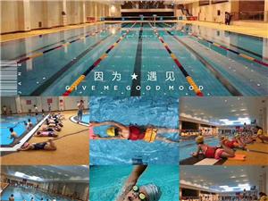 泛华大酒店游泳培训班