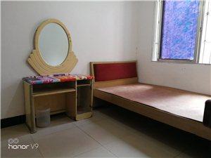 仁和街,单间带卫生间1室1卫260元/月