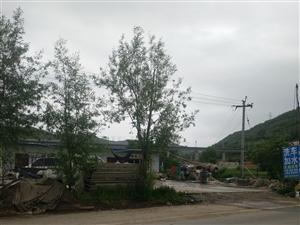 恭门镇大桥临二级路黄金地段低出售