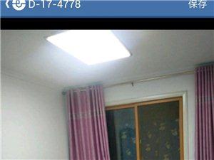 宏基王朝1室1厅1卫31万元