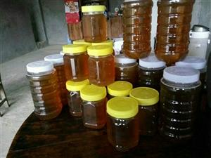 纯天然原生态中华土蜂蜜,原生态养殖的百花土蜂蜜跟野生蜜一样!