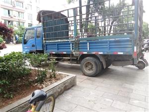 凯马仓栅式货车