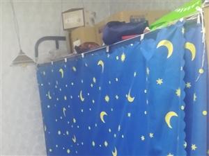 学生上下床,去年买的。350元一张。