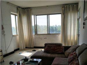 园林学校旁3室2厅1卫28万元