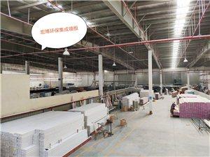 宜昌枝江竹木纤维生态木pvc微晶石高档集成墙板