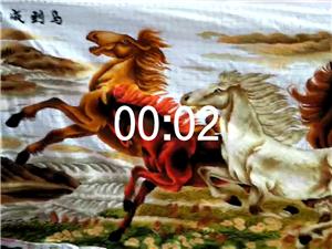 起價9800元十字繡——八駿圖