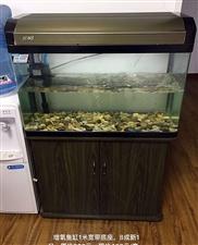 鱼缸1.5米高1米宽,带增压带照明,原价1500元现价500元,9成新。