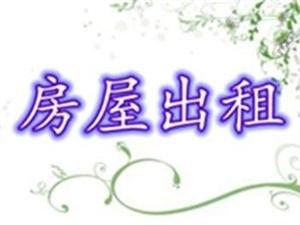 闃冲厜寰″洯2瀹�2鍘�1鍗�1333鍏�/鏈�