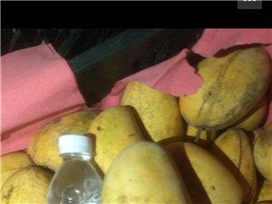 芒果十元三斤小的大的2.5斤