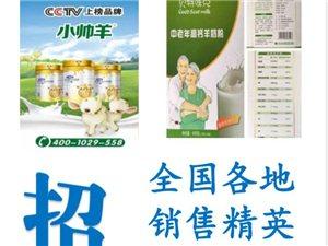 小帥羊羊奶粉常年招:區域代理 批發  零售