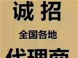 新能源车小将汽车尾气清洁剂美高梅官网服务招商中心
