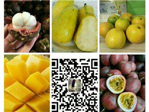 新鮮水果,產地直發