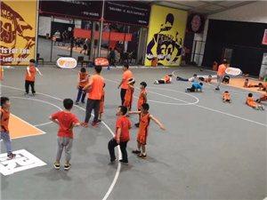 鄭州自如體育籃球羽毛球培訓