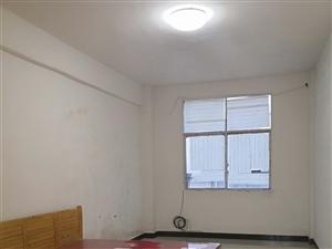 金盆山公寓1室1厅1卫300元/月