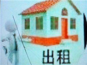 合江县城踏水桥电梯房2室2厅1卫1300元/月