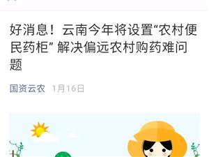 镇雄县农村便民药柜