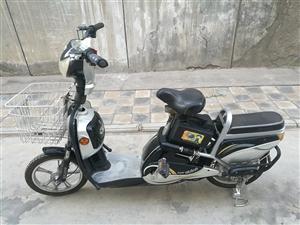 爱玛电动车,长时间不骑了,现低价出售,车况良好,八成新,700元!