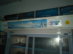 二手冰雪儿保鲜柜转让