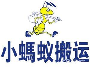 招远小蚂蚁搬家公司,18865622031
