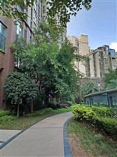 仁寿天府新区,3室2厅45.6万元