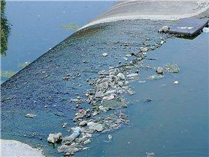 蓝色港湾东侧橡胶坝垃圾一片