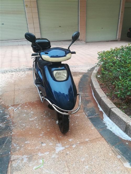 出售二手电动车,低价换电瓶电15179740900