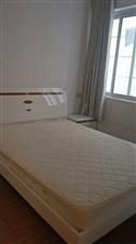 园林新城1室1厅1卫733元/月