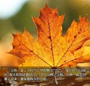 今日是立秋