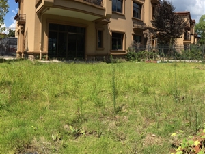 碧桂园别墅229平米清水房送200平米花园