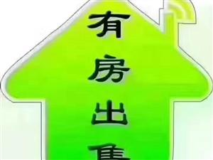 龙泉公寓2室毛坯44万元