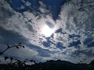 我喜欢的是南天白云。