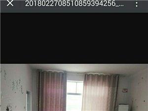 北关标准间1室1厅1卫400元/月