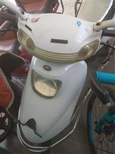 五星钻豹电动车踏板电动车品牌的车子,车子买来有个四五年了。换过一次电池,现在充满电还能跑个七八十里没...