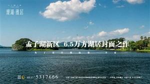 孟子湖水岸,养生湖居,毗邻新人民医院