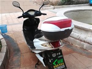 出售二手电动车,超威电池上门安装全城最优惠,电微信同号15179740900
